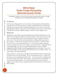 white-paper-public-private-partnership_page_2